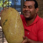 Farmers' market vendor selling jackfruit